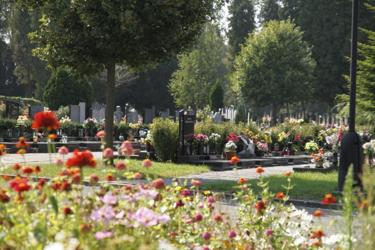 pohled na hřbitov